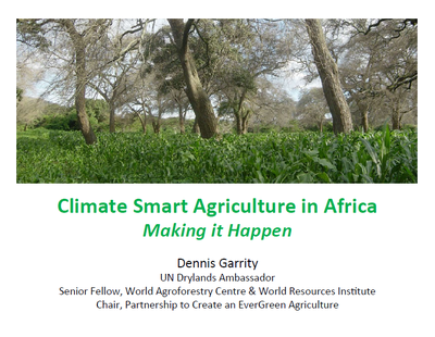 Climate-Smart Agriculture in Africa: Making it Happen