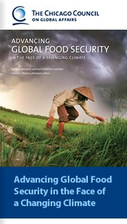 Advancing Global Food Security in the Face of a Changing Climate