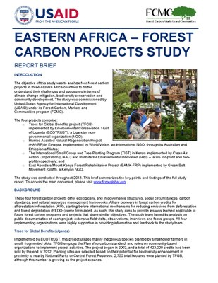 Report Brief: Eastern Africa - Forest Carbon Projects Study