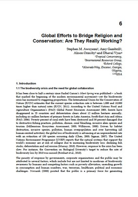 Global Efforts to Bridge Religion and Conservation: Are They Really Working?