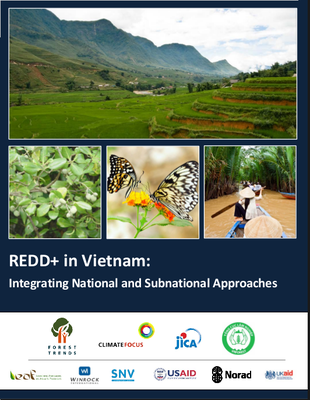REDD+ in Vietnam: Integrating National and Subnational Approaches
