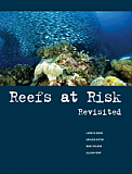 Reefs at Risk Revisited
