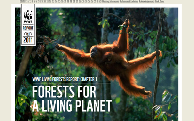 WWF's Living Forest Report: Chapter 1