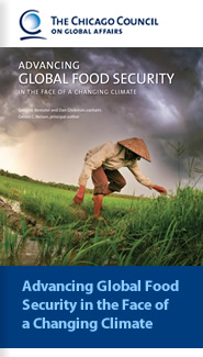 Cover: Advancing Global Food Security in the Face of a Changing Climate