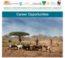 ABCG Career Opportunities February, 2020