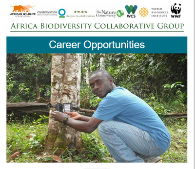 ABCG Career Opportunities mid-January 2018