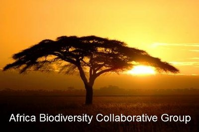 Africa Biodiversity Collaborative Group - Jobs and Opportunities