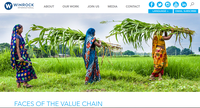 Faces of the Value Chain