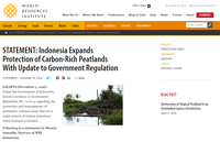 Statement: Indonesia Expands Protection of Carbon-Rich Peatlands With Update to Government Regulation