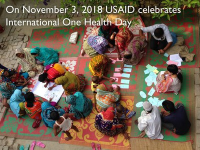 USAID Celebrates International One Health Day November 3 2018
