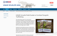 USAID Unveils Field Guide to Combat Pangolin Trafficking
